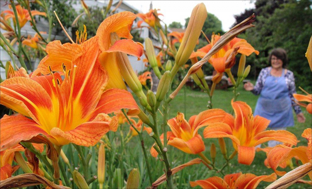 Walking Amongthe Lillies