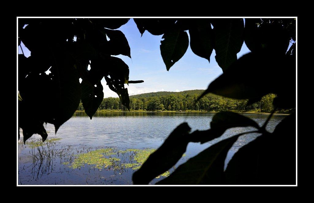 Sawmill Lake