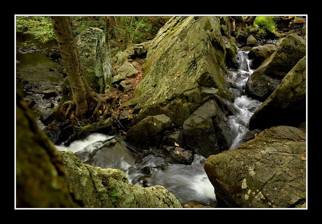 Sussex Branch Trail