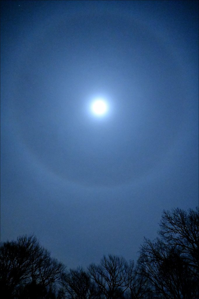Winter Halo Moon